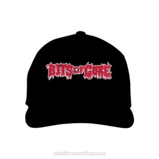 Bits of Gore Logo Embroidered Hat or Beanie